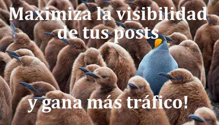maximiza la visibilidad de tus posts